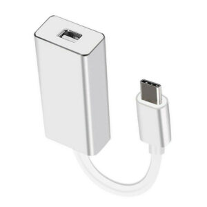 USB-C 3.1 Han til Mini Displayport